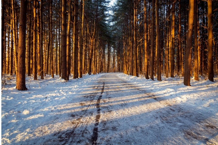 Winter Adventure Scenic Drives